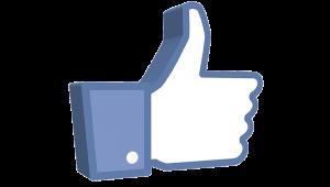 social media management   Coyne.Marketing